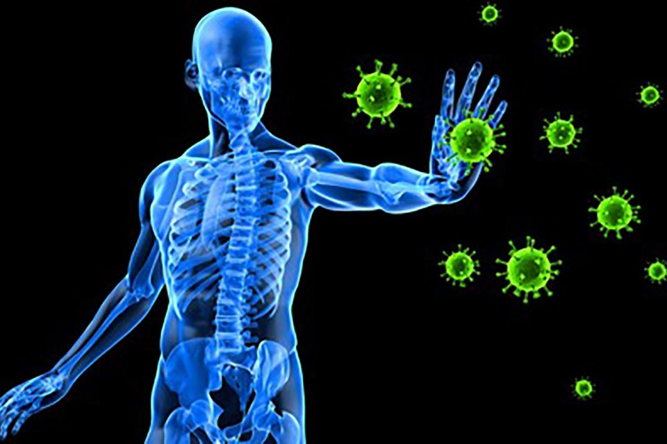 ImmuneSystemRes